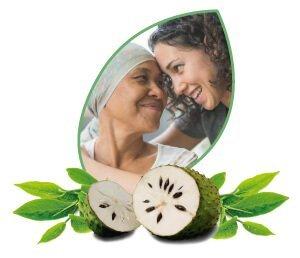 Según la medicina tradicional aún no existe una cura efectiva para el cáncer, sin embargo, diversos estudios muestran que algunas plantas tienen sustancias que pueden ayudar a reducir e incluso desaparecer tumores malignos blandos como el cáncer de pulmón, estomago, piel, etc.
