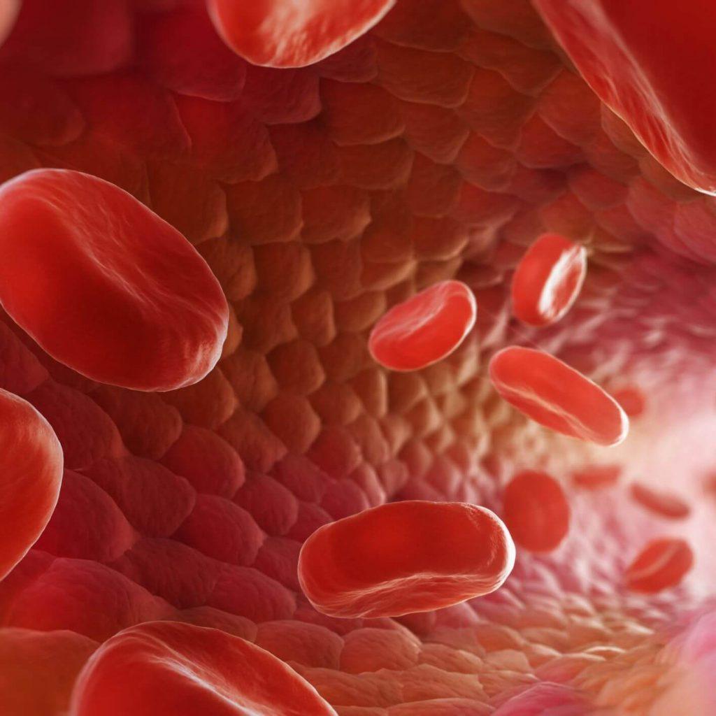como mejorar riego sanguineo 597b4be55f9b58928bd870bd 1 3