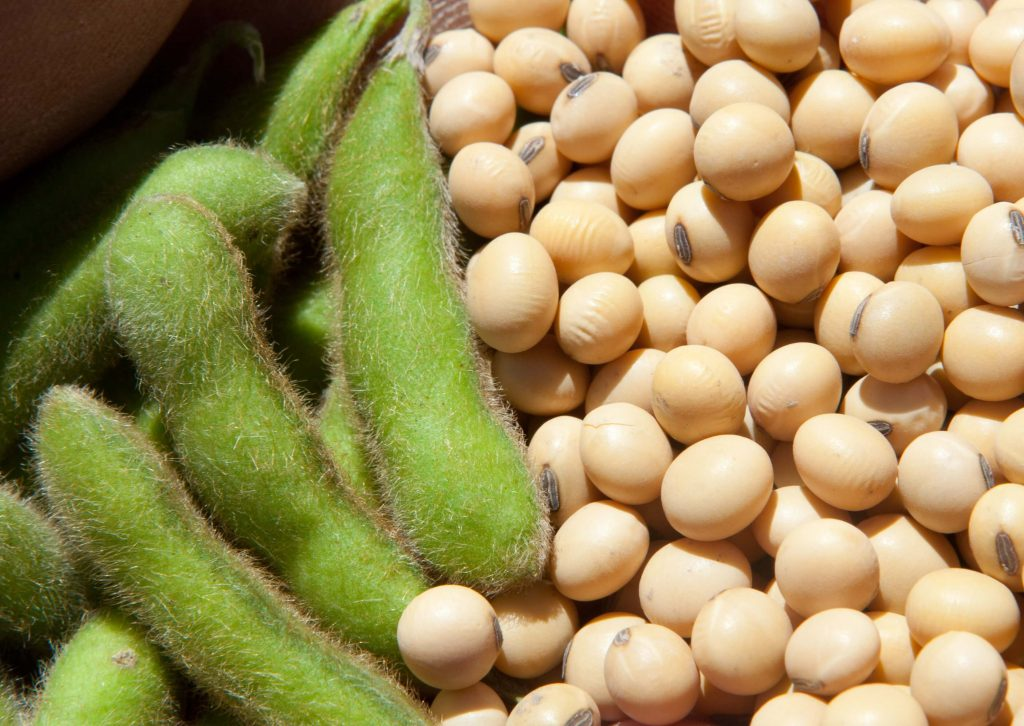 soya beneficios